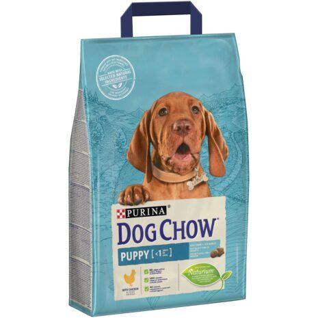 dog-chow-kutya-szaraztap-kolyok-baranyos.jpg