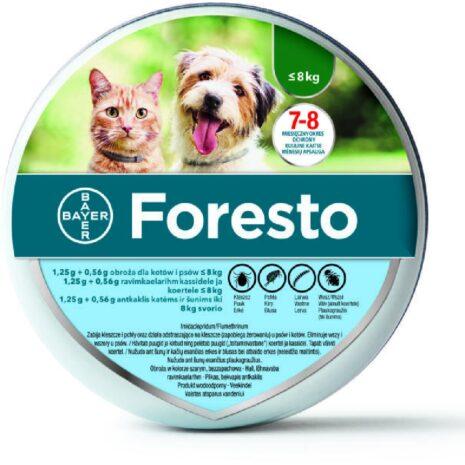 foresto-kutya-egeszsegugy.jpg