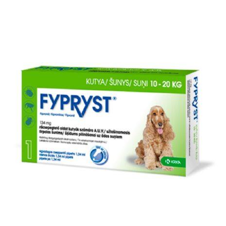 fypryst-kutya-egeszsegugy-eloskodok-ellen-2.jpg