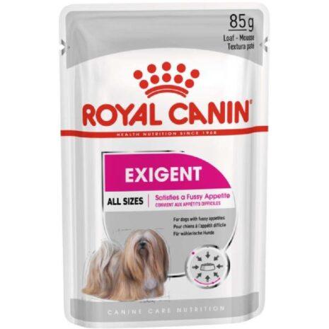 royal-canin-kutya-nedvestap-felnott.jpg