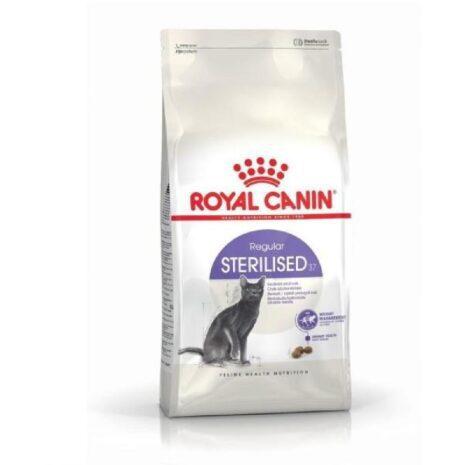 royal-canin-macska-szaraztap-felnott-1.jpg